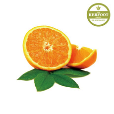 스윗오렌지 에센셜 오일(sweet Orange e.o)Citrus sinensis